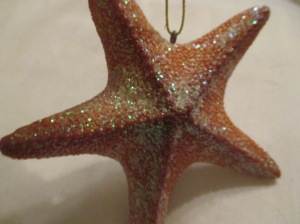 A Starfish from a trip to Baltimore a few years ago.