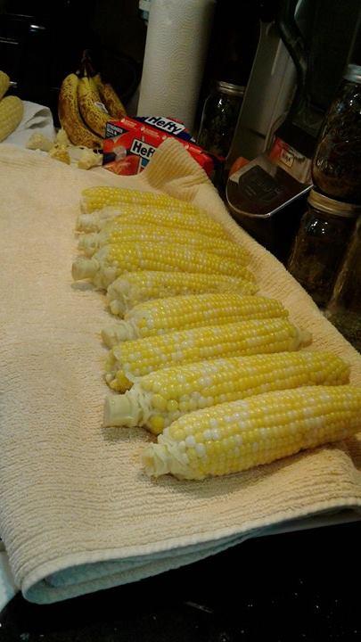 corn 11