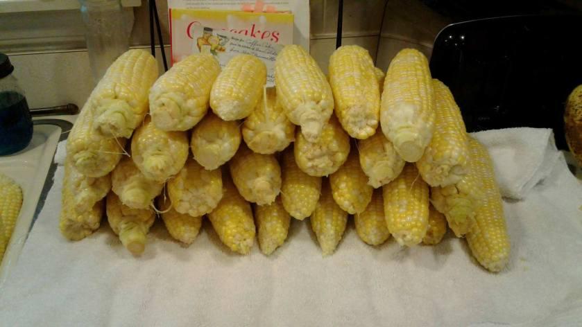 corn 9